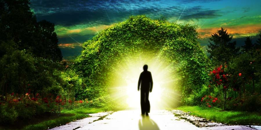 Terapia de Vidas Passadas – Regressão